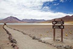 Miscanti盐水湖,智利 免版税库存图片