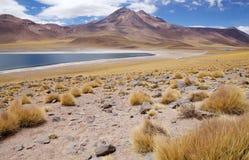 Miscanti e Miniques Lagoon, Chile Stock Photos
