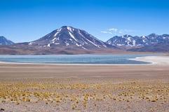 Miscanti Lagoon Royalty Free Stock Photos