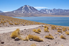 Miscanti Lagoon. Views of Miscanti Lagoon, Chile Stock Photography