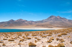 Miscanti lagoon, The Andes, Chile Stock Images