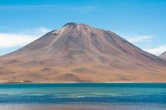 Miscanti lagoon in Atacama, Chile Stock Image