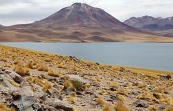 Miscanti Lagoon, Chile Royalty Free Stock Image