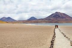 Miscantilagune, Chili Stock Afbeelding