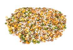 Miscela dei cereali, piselli, lenticchie, riso, orzo Immagine Stock Libera da Diritti