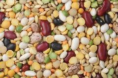 Miscela dei fagioli e dei cereali Fotografia Stock