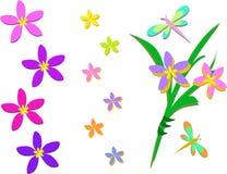 Miscela dei fiori, del mazzo e della libellula tropicali Fotografia Stock Libera da Diritti