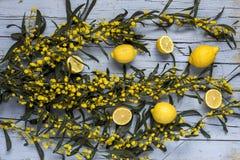 Miscela dei limoni freschi Immagini Stock