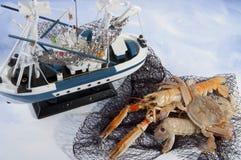 Miscela dei pesci freschi Fotografia Stock Libera da Diritti