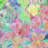 Miscela del fiore Fotografia Stock