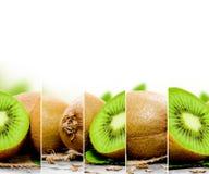 Miscela del kiwi Fotografia Stock Libera da Diritti