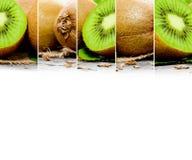 Miscela del kiwi Fotografie Stock
