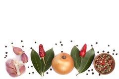 Miscela della foglia della cipolla, dell'aglio, del peperoncino, del granello di pepe e dell'alloro isolata su fondo bianco con l Immagini Stock Libere da Diritti