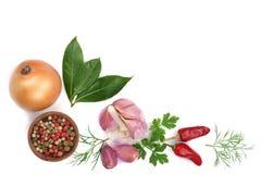 Miscela della foglia della cipolla, dell'aglio, del peperoncino, del granello di pepe e dell'alloro isolata su fondo bianco con l Fotografia Stock Libera da Diritti