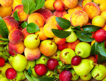 Miscela della frutta fresca di estate Fotografie Stock