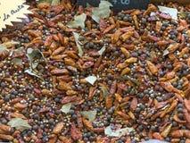 Miscela della spezia Miscela pronta per carne arrostita con il peperoncino rosso e il vario Immagini Stock