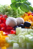 Miscela della verdura e della mozzarella Fotografie Stock