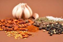 Miscela delle spezie e delle immagini di riserva dell'aglio Fotografia Stock