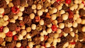 Miscela delle spezie: peperoncino verde bianco nero rosso stock footage