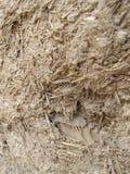 Miscela di struttura di legno e del fango fotografia stock