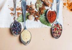 Miscela di vista superiore delle spezie ed erbe differenti, cuoco ed ingredienti di cucina sulla tavola con la decorazione della  Fotografie Stock