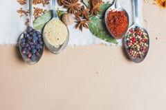 Miscela di vista superiore delle spezie ed erbe differenti, cuoco ed ingredienti di cucina sulla tavola con la decorazione della  Immagini Stock Libere da Diritti