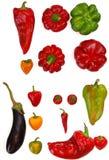 Miscela fresca delle verdure paprica e melanzana su backgroun bianco Fotografia Stock Libera da Diritti