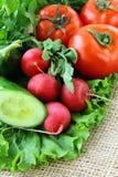 Miscela organica della verdura fresca Fotografia Stock