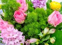 Miscela variopinta dei fiori Fotografia Stock