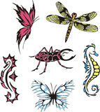Miscellaneous insects and sea horses Stock Images