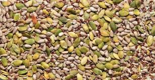 Miscellaneous seeds texture Royalty Free Stock Photos