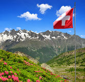 The Mischabel group. With Swiss flag - Swiss alps Royalty Free Stock Image