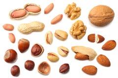 mischen Sie Mandeln, Acajounüsse, Haselnuss, Erdnüsse, Walnüsse, die Pistazie, die auf weißem Hintergrund lokalisiert wird Beschn Stockbild