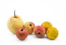 Mischfruchtstillleben auf weißem Hintergrund Stockbilder