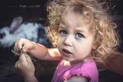 Mischievous naughty cute child girl portrait feeding animals on farm. Mischievous naughty cute child girl portrait feeding rabbit on farm Stock Photos