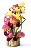 Mischirisblumen in einem Vase Lizenzfreies Stockbild