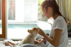 Mischrassejugendliche, die pomeranian Hund unterrichtet, einen Trick auf dem Bett zu tun lizenzfreie stockbilder