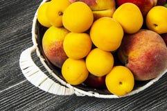 Mischsommerfruchtbilder in einem Korb, weißer Hintergrund mit einem Korb von Pfirsichen, Pflaumen, Äpfel, Nektarinen, Aprikosenbi Lizenzfreies Stockbild