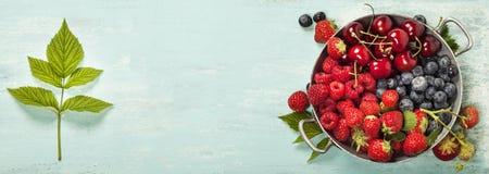 Mischung der frischen Beeren lizenzfreies stockfoto
