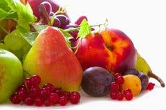 Mischung der frischen Früchte. Stockbild