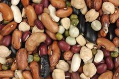 Mischung der unterschiedlichen Art der Bohnen Stockbild