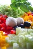 Mischung des Gemüses und des Mozzarellas Stockfotos
