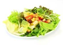 Mischung mit Tomate, Kopfsalat, Gurke Lizenzfreies Stockbild
