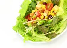 Mischung mit Tomate, Kopfsalat, Gurke Stockfotografie