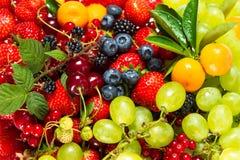 Mischung von frischen Früchten und von Beeren. rohe Lebensmittelinhaltsstoffe Stockfotos
