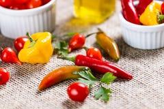 Mischung von Pfeffern mit Tomate, Knoblauch und Olivenöl stockfotografie