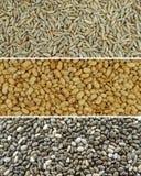 Mischung von Rye-, Sojabohnenöl- und Chia-Samen lizenzfreie stockfotografie