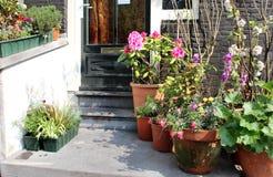 Mischung von schönen Blumen auf der Terrasse Stockbilder