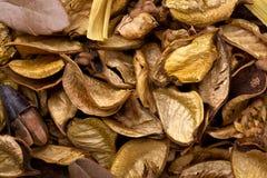Mischung von verschiedenen Kräutern für Aromatherapie Stockbild