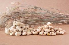 Mischungs-Gruppe Nüsse auf Papierhintergründen Stockbild